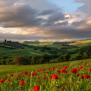 Podere on a hill at sunrise under a clouded sky with red poppies on the foreground in Tuscany during a photography workshop