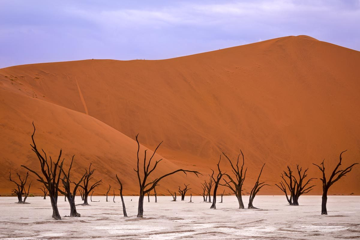 Deadvlei with its dead camel thorns and people walking up to crest of Big Daddy